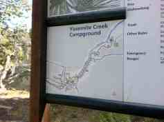 yosemite-creek-campground-yosemite-national-park-ca-23