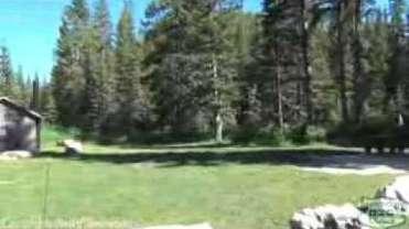 Beaver Creek Campground