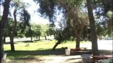 Indian Oaks Trailer Ranch