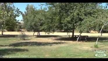 Lemon Cove Sequoia Campground