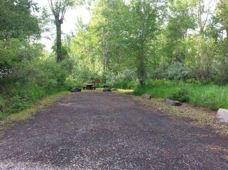 big-game-campground-cody-rv-site