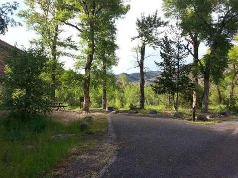 elk-fork-campground-cody-site2