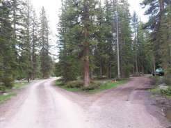 falls-campground-main-road-and-site-entrance
