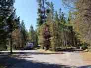 big-springs-campground-island-park-id-03