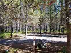 big-springs-campground-island-park-id-06