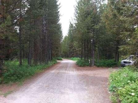 box-canyon-campground-road