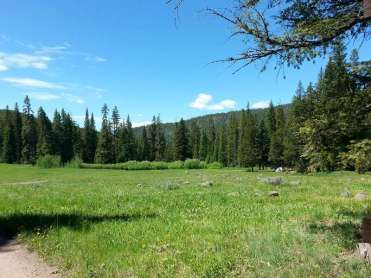 timber-camp-campground-gardiner-montana-prairie