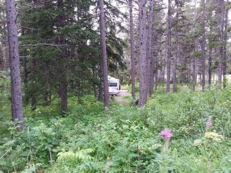 summit-campground-east-glacier-park-montana-rvsite