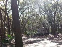 Edward Medard Regional Park Campground near Plant City Florida04