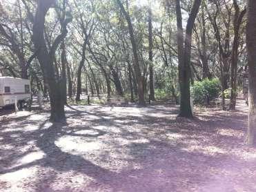 Edward Medard Regional Park Campground near Plant City Florida07