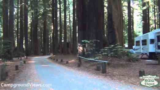 Burlington Campground – Humboldt Redwoods State Park