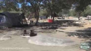 Live Oak Campground