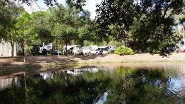 Timberlane Rv Park And Resort Bradenton Florida Rv Park