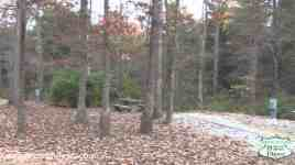 Cumberland Mountain State Park Campground