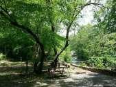 Cherokee Campgrounds and Log Cabins in Cherokee North Carolina3