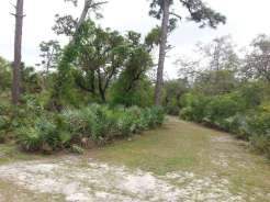 Donald MacDonald Campground Park in Sebastian Florida (Roseland)03