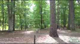 Newport News Park Campground