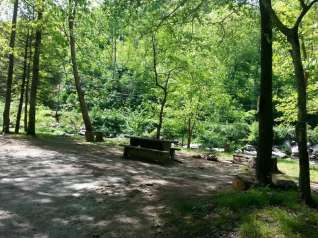 Mingo Falls Campground near Cherokee North Carolina