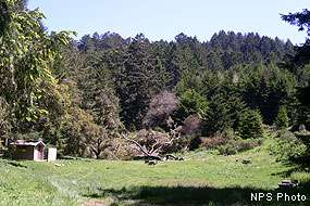 glen-camp