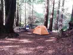 limekiln-state-park-campground-07