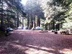 limekiln-state-park-campground-08