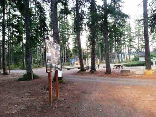 quilcene-community-campground-washington-5