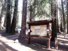 atwell-mill-campground-sequoia-national-park-05