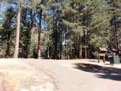azalea-campground-sequoia-national-park-04