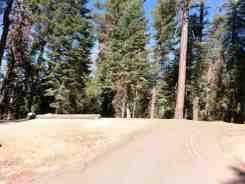 azalea-campground-sequoia-national-park-05