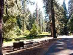 azalea-campground-sequoia-national-park-09