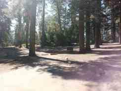 azalea-campground-sequoia-national-park-10