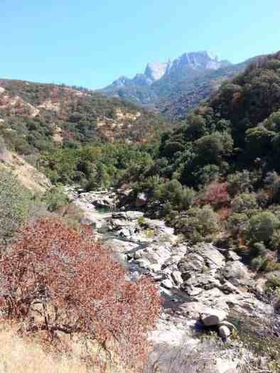 buckeye-campground-sequoia-kings-canyon-national-park-02