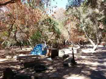 buckeye-campground-sequoia-kings-canyon-national-park-05