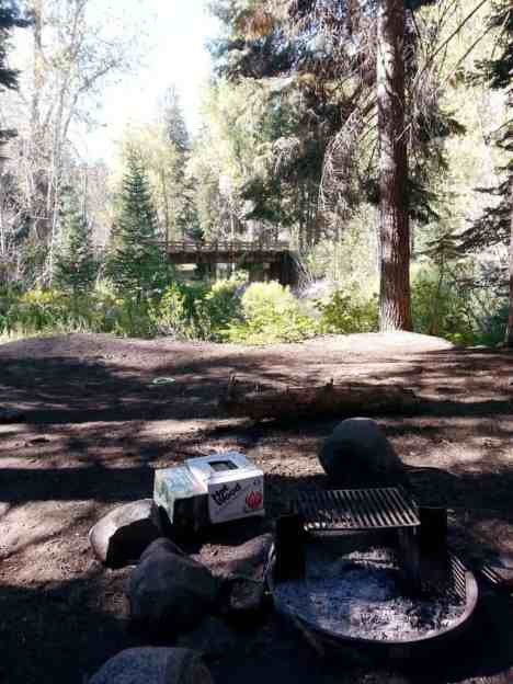 cold-springs-campground-sequoia-kings-canyon-national-park-15