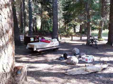 cold-springs-campground-sequoia-kings-canyon-national-park-17