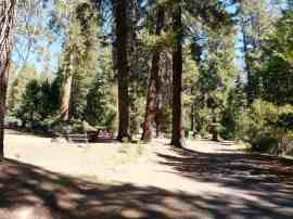 crystal-springs-campground-sequoia-kings-canyon-national-park-10