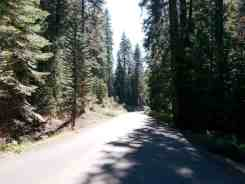 dorst-creek-campground-sequoia-kings-canyon-national-park-02
