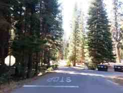 dorst-creek-campground-sequoia-kings-canyon-national-park-05