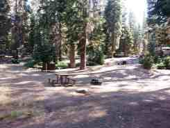 dorst-creek-campground-sequoia-kings-canyon-national-park-07