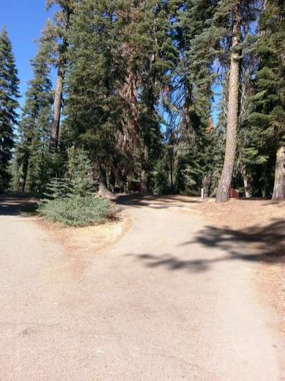 dorst-creek-campground-sequoia-kings-canyon-national-park-15