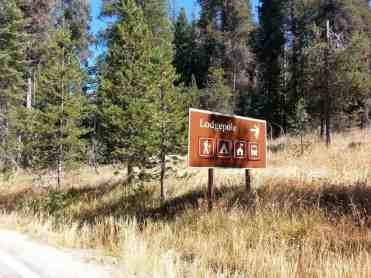 lodgepole-campground-sequoia-kings-canyon-national-park-01