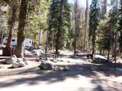 lodgepole-campground-sequoia-kings-canyon-national-park-05
