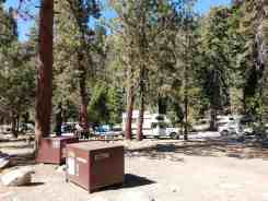 lodgepole-campground-sequoia-kings-canyon-national-park-08