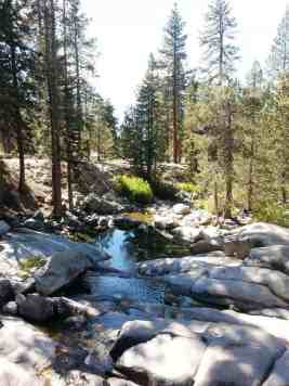 lodgepole-campground-sequoia-kings-canyon-national-park-13