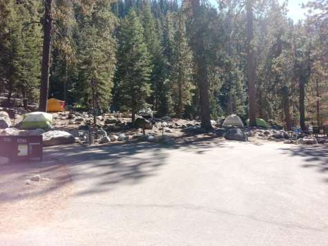lodgepole-campground-sequoia-kings-canyon-national-park-14
