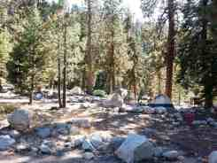lodgepole-campground-sequoia-kings-canyon-national-park-15