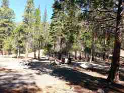moraine-campground-sequoia-kings-canyon-national-park-07