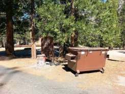 moraine-campground-sequoia-kings-canyon-national-park-09