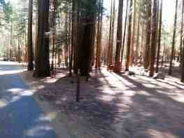 sheep-creek-campground-sequoia-kings-canyon-national-park-07