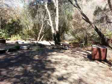 south-fork-campground-seqouia-national-park-03